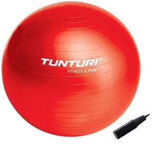 Tunturi gymbal 65 cm-2