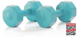 Gymstick Active Vinyl Dumbbells - Met Online Trainingsvideo's