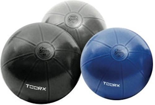 Toorx Fitnessbal Gymbal PRO Donkergrijs - 75 cm