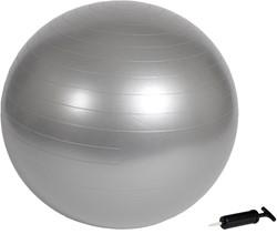 VirtuFit Anti-Burst Fitnessbal Gymbal Grijs 75 cm met Pomp