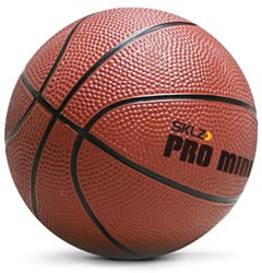 SKLZ Pro Mini Hoop Basketbal