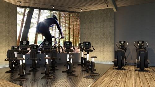Life Fitness Platinum Explore Lifecycle Hometrainer - Black Onyx - Gratis montage